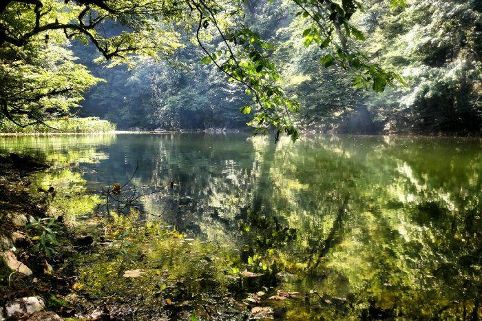 تور یکروزه طبیعت گردی دریاچه فراخین و آبشارهای دارنو